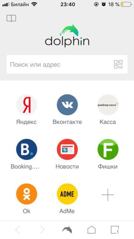 Интерфейс Dophin
