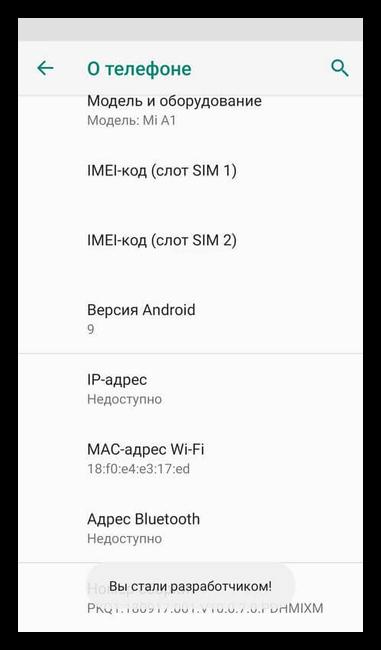 Разблакировка режима разработчика на Андроид 9