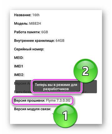 Активация режима разработчика